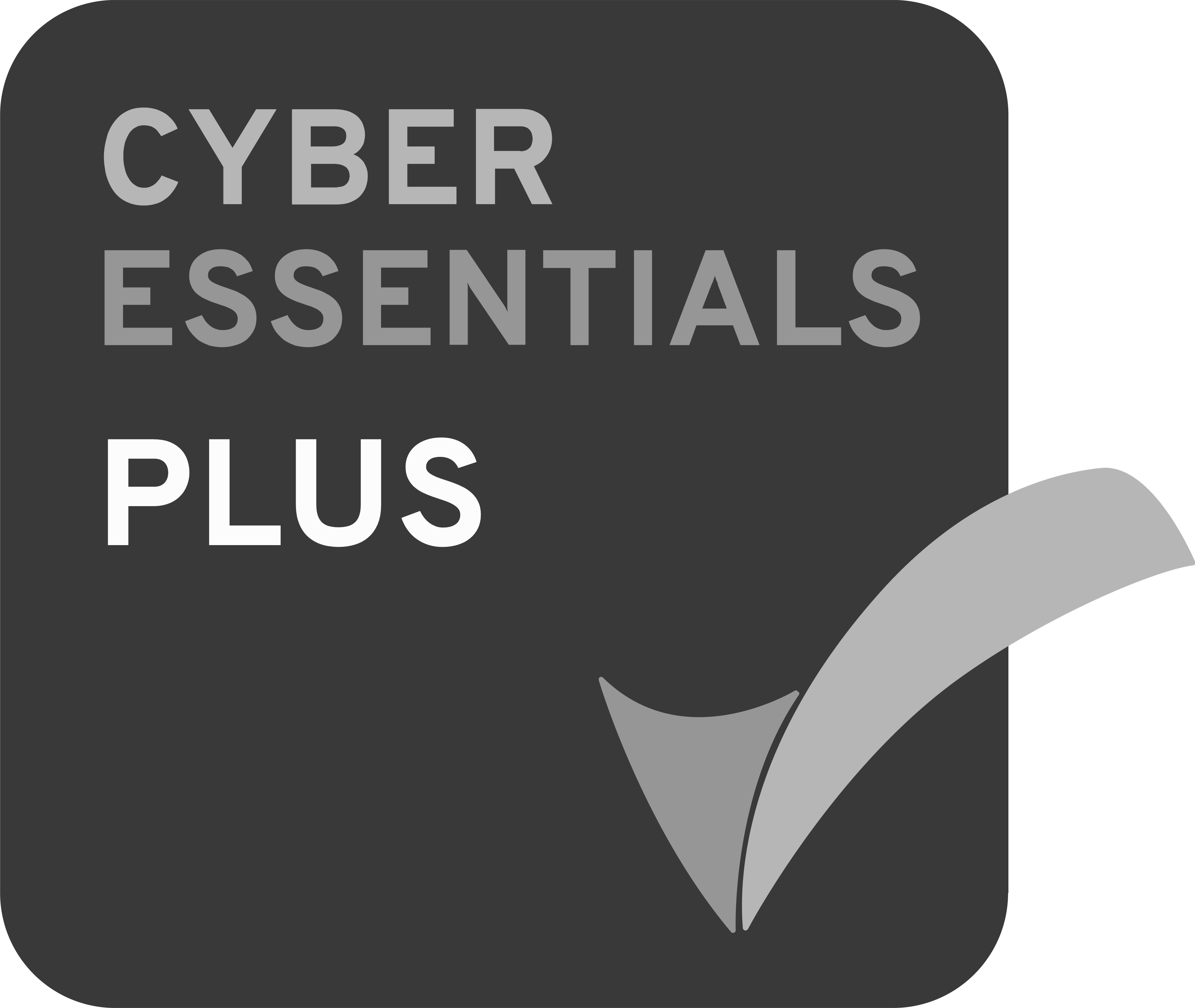Cyber Essentials Plus Icon